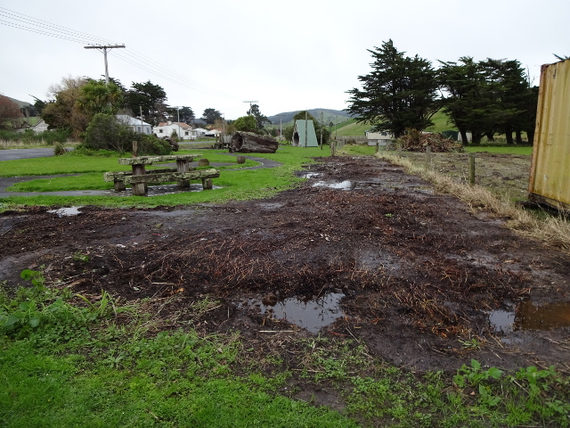 The village green with flax bushes removed